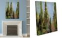 "Creative Gallery Watercolor |talian Cedar Trees On 20"" X 24"" Canvas Wall Art Print"