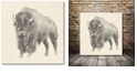 """Courtside Market Western Bison Study Gallery-Wrapped Canvas Wall Art - 16"""" x 16"""""""
