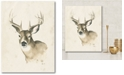 """Courtside Market Big Buck I Gallery-Wrapped Canvas Wall Art - 16"""" x 20"""""""
