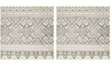 Safavieh Adirondack Ivory and Silver 4' x 4' Square Area Rug