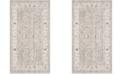 Safavieh Windsor Light Gray and Ivory 3' x 5' Area Rug