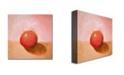 "Trademark Global Michelle Calkins 'Red Sphere Still Life' Canvas Art - 18"" x 18"""