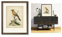 """Courtside Market Edwards Gold Finch 16"""" x 20"""" Framed and Matted Art"""