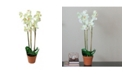 Northlight Potted Phalaenopsis Orchid Artificial Silk Flower Plant