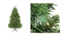 Northlight Pre-Lit Northern Pine Full Artificial Christmas Tree - Warm Clear Led Lights