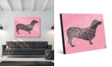 "Creative Gallery Traits Dachshund Dog in Grey on Pink 20"" x 24"" Acrylic Wall Art Print"