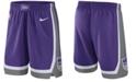 Nike Men's Sacramento Kings Icon Swingman Shorts