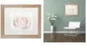 "Trademark Global Cora Niele 'White Rose' Matted Framed Art, 16"" x 20"""