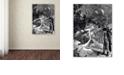 "Trademark Global Nick Bantock 'Dodgers Dream' Canvas Art, 35"" x 47"""