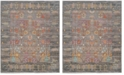 Safavieh Valencia Gray and Multi 8' x 10' Area Rug