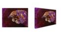 "Trademark Global Corina St. Martin 'Pangolin' Canvas Art - 19"" x 14"" x 2"""