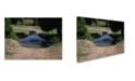 "Trademark Global Robert K Jones 'Defender 1a' Canvas Art - 32"" x 24"" x 2"""