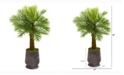 Nearly Natural 40in. Robellini Palm Artificial Tree in Ribbed Metal Planter