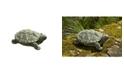 Campania International My Pet Turtle Garden Statue