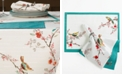 Lenox Chirp Collection