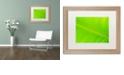 """Trademark Global Cora Niele 'Leaf Texture II' Matted Framed Art, 16"""" x 20"""""""