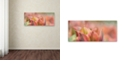 "Trademark Global Cora Niele 'Tulip 'Artist' Scape' Canvas Art, 10"" x 24"""