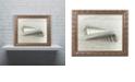 "Trademark Global Cora Niele 'Sea Snail Shells' Ornate Framed Art, 11"" x 14"""