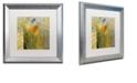 "Trademark Global Color Bakery 'Emily I' Matted Framed Art, 16"" x 16"""