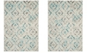 Safavieh Skyler Ivory and Blue 6' x 9' Area Rug
