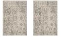Safavieh Winston Beige and Gray 4' x 6' Area Rug