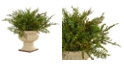 "Nearly Natural 15"" Cedar and Blueberry Artificial Plant w/ Planter"