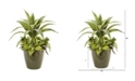 """Nearly Natural 20"""" Sansevieria Artificial Plant in Planter"""