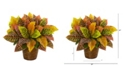 """Nearly Natural 17"""" Garden Croton Artificial Plant in Basket Real Touch"""