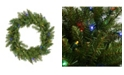 "Northlight 24"" Pre-Lit Northern Pine Artificial Christmas Wreath - Multi-Color LED Lights"
