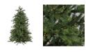Northlight 9' Pre-Lit Oregon Noble Fir Artificial Christmas - Warm White LED Lights