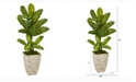 Nearly Natural 51in. Dieffenbachia Artificial Plant in Stone Washed Planter Real Touch