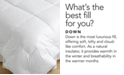Pacific Coast Feather CLOSEOUT!  Pacific Coast AllerRest® Medium Weight Bed Bug Proof Down Comforters, Hyperclean® Down Fill