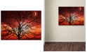 "Trademark Global Philippe Sainte-Laudy 'Big Bad Moon' 30"" x 47"" Canvas Wall Art"