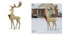 """National Tree Company 55"""" Pre-lit Crystal Champagne Standing Buck"""