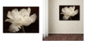 "Trademark Global Cora Niele 'White Tulip II' Canvas Art, 24"" x 32"""