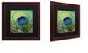 "Trademark Global Color Bakery 'Peacock Candy V' Matted Framed Art, 16"" x 16"""