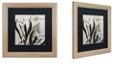 """Trademark Global Color Bakery 'Flowering Herbs I' Matted Framed Art, 16"""" x 16"""""""