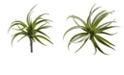 Nearly Natural 8-In. Air Plant Artificial Succulent, Set of 12