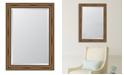 "Melissa Van Hise Brown with Dark Edges Framed Mirror - 30.5"" x 42.5"" x 2"""