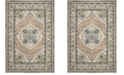 Safavieh Phoenix Ivory and Gray 4' x 6' Area Rug