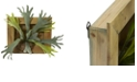 """Nearly Natural 13"""" Staghorn Artificial Plant in Wood Hanging Frame"""