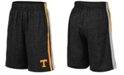 Colosseum Big Boys Tennessee Volunteers Team Stripe Shorts