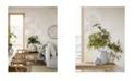 "Wall Vision 21"" x 396"" Dragon Leaf Botanical Wallpaper"