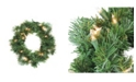 Northlight Deluxe Windsor Pine Artificial Christmas Wreath - 12-inch Clear Lights