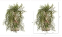 Nearly Natural 13in. Tillandsia Moss Artificial Plant in Floral Pitcher