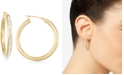 Signature Gold Crystal Hoop Earrings in 14k Gold over Resin