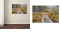 "Trademark Global Cora Niele 'Path' Canvas Art, 22"" x 32"""