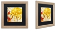 "Trademark Global Color Bakery 'Chrysanthemums Ii' Matted Framed Art, 16"" x 16"""