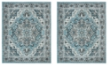 Safavieh Skyler Blue and Ivory 8' x 10' Area Rug