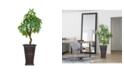 "Laura Ashley 47"" Pachira Aquat Real Touch, Indoor/Outdoor in Fiberstone Planter"